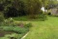 Carwinion House Gardens (7)-min