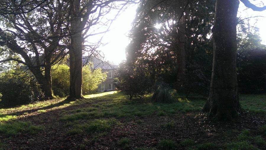 Carwinion House Gardens (8)-min