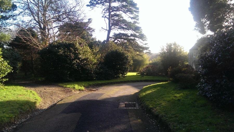 Carwinion House Gardens (9)-min